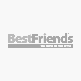 Gummi Bowl Melamine Blue Dog Bowl - Medium