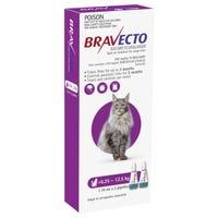 Bravecto Flea & Tick 6.25-12.5kg Cat Spot On - 2pk