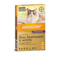 Advocate Flea And Worming Spot On Large Cat 4kg+ - 3pk