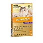 Advocate Flea And Worming Spot On Large Cat 4kg+ - 6pk