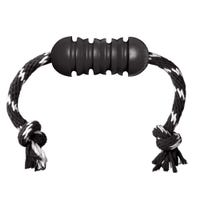 KONG Extreme Dental with Rope  Dog Toy - Medium
