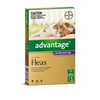 Advantage Flea Spot On Large Cat 4kg+ - 4pk
