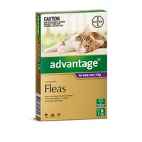 Advantage Flea Spot On Large Cat 4kg+ - 6pk