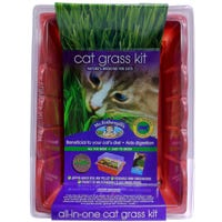 Mr Fothergill's Cat Grass Kit - Each