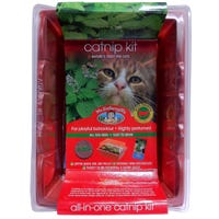 Mr Fothergill's Catnip Kit - Each