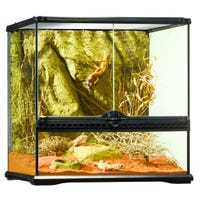 Exo Terra Glass Terrarium Cube - 18x18x18in