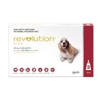Revolution Spot On with Cannex Wormer Medium Dog 10.1-20kg - 3pk