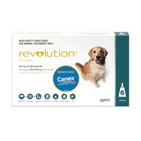 Revolution Spot On with Cannex Wormer Large Dog 20.1-40kg - 6pk