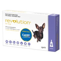 Revolution Spot On with Cannex Wormer Extra Small Dog 5kg - 6pk