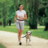Snooza Active Walker Hands Free Dog Lead - Each