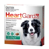 Heartgard Plus Wormer Chews Medium Dog 12-22kg - 6pk