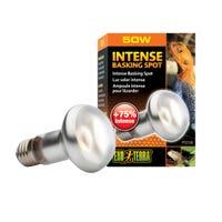 Exo Terra Repti Intense Basking Spot Lamp - 50W