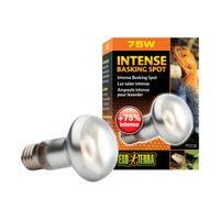 Exo Terra Repti IntenseBasking Spot Lamp - 75W