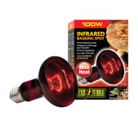 Exo Terra Heat Glo Infrared Basking Spot Heat Lamp - 100w