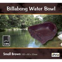 URS Billabong Water Bowl Brown Reptile Bowl - Small