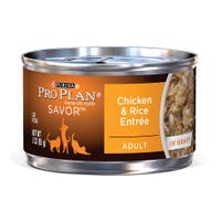 Pro Plan Adult Cat Chicken and Rice Entree Wet Cat Food - 85g