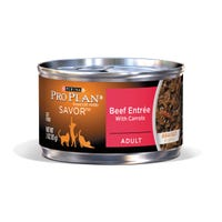 Pro Plan Adult Cat Beef Entree with Carrots Wet Cat Food - 85g