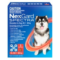Nexgard Spectra Dog Flea