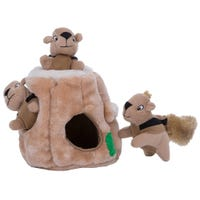 Outward Hound Hide A Squirrel Jr Interactive Plush Dog Toy - Small