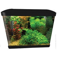 Aqua One LifeStyle Aquarium 51cm Black Fish Tank - 52L
