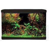 Aqua One LifeStyle Aquarium 80cm Black 127L