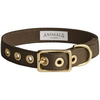 Animals In Charge Collar Olive Dog Collar - XLarge