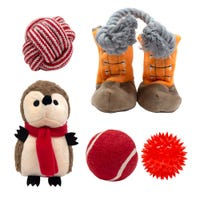 Companion Gear Xmas Toy Gift Set - 5pk