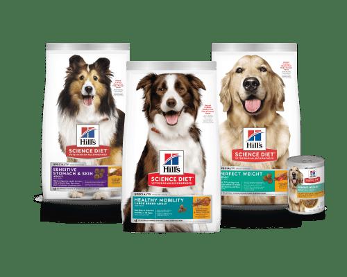 Science Diet Everyday Dog