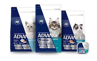 Advance Cat